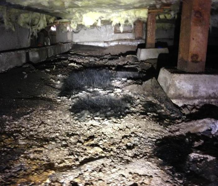 Residential Mold Loss - Eugene, OR