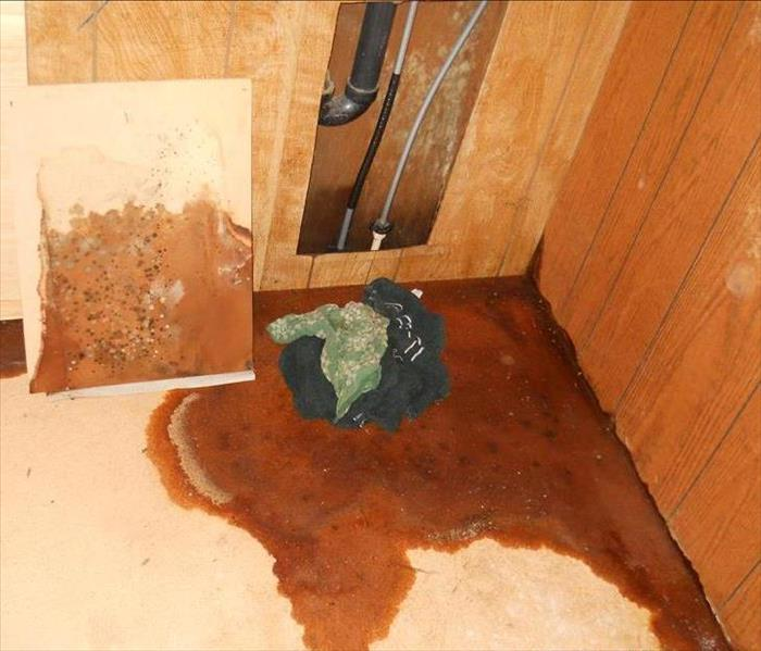 Residential Mold Loss - Myrtle Creek, OR