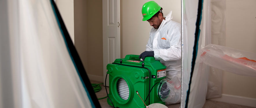 Roseburg, OR mold cleanup
