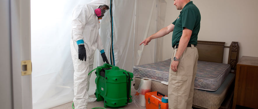 Roseburg, OR mold removal process
